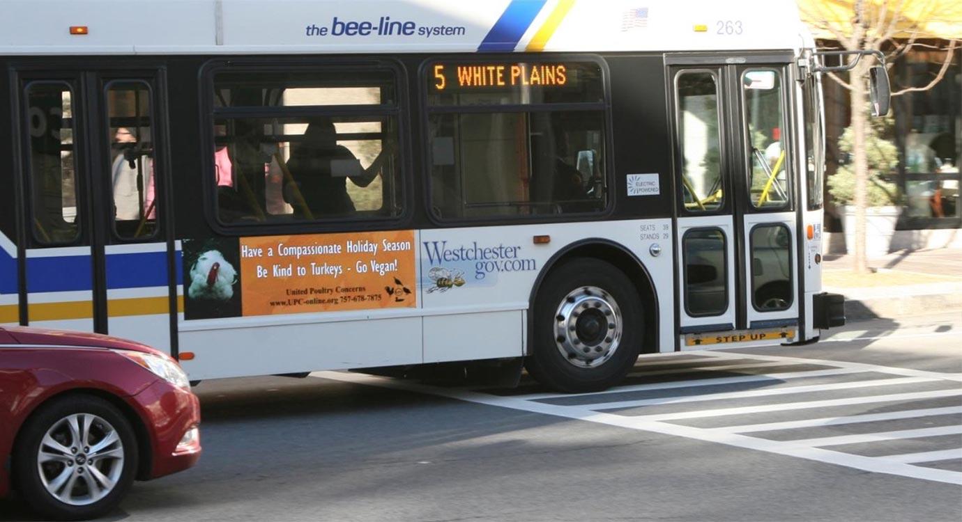 new york bus ad