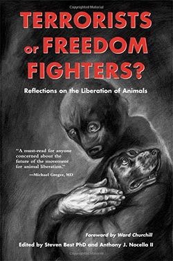 Terrorists or Freedom Fighters book cover