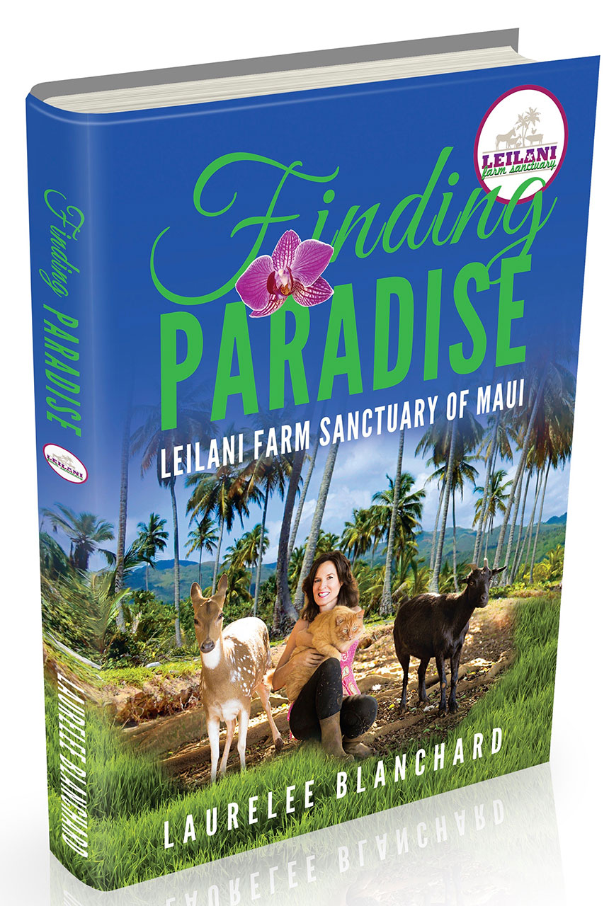 Finding Paradise book cover