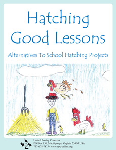 hatching good lessons