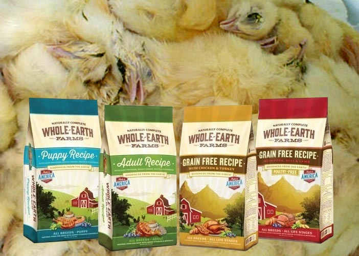 Whole-Earth pet food next to dead chicks