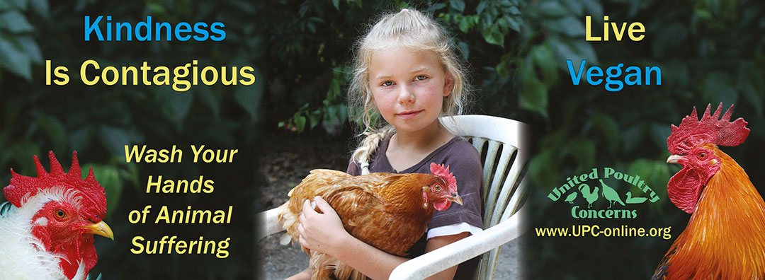 Kindness is contagious. Wash your hands of animal suffering. Live Vegan