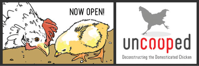 uncooped now open