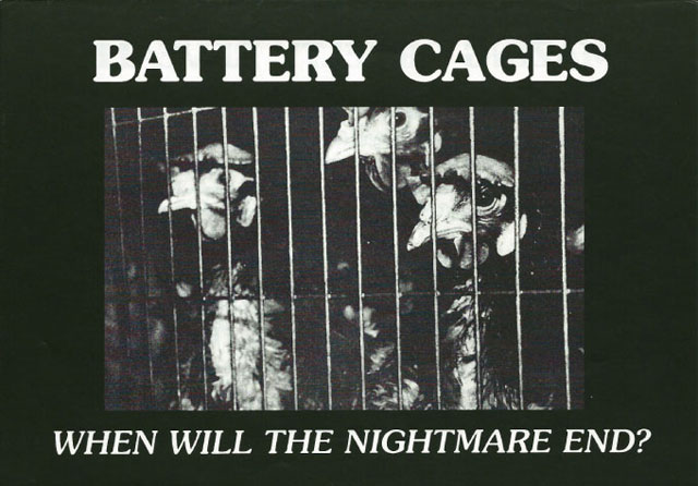battery cages nightmare