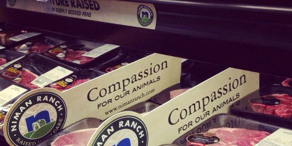 whole foods ironic compassion sign