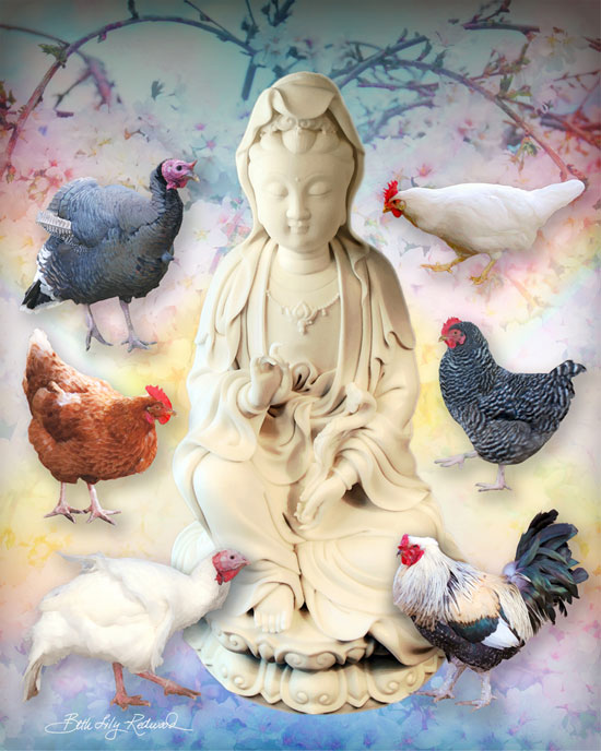 compassion for all beings