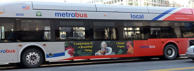 2013 bus ad in action