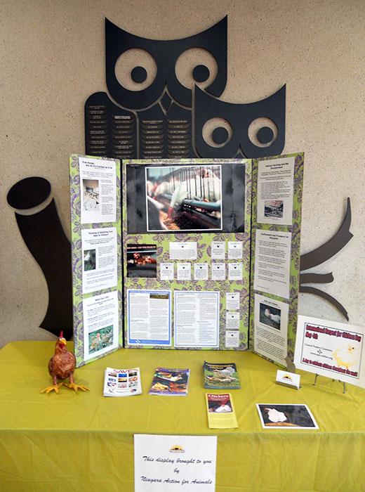 Niagara Action for Animals library display