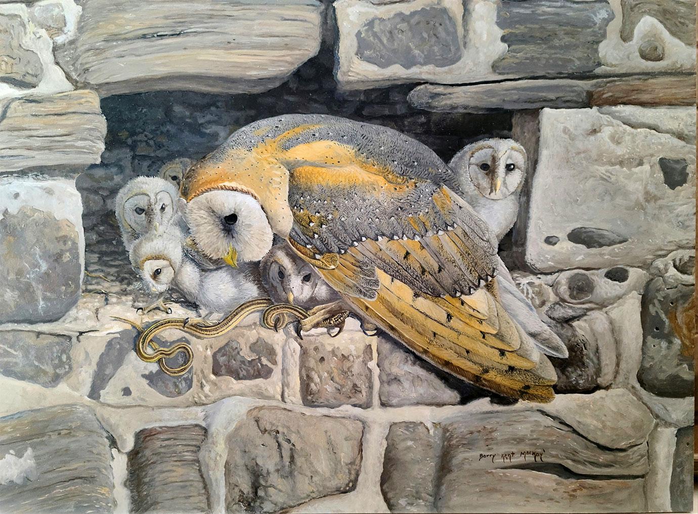 barn owl family huddled together