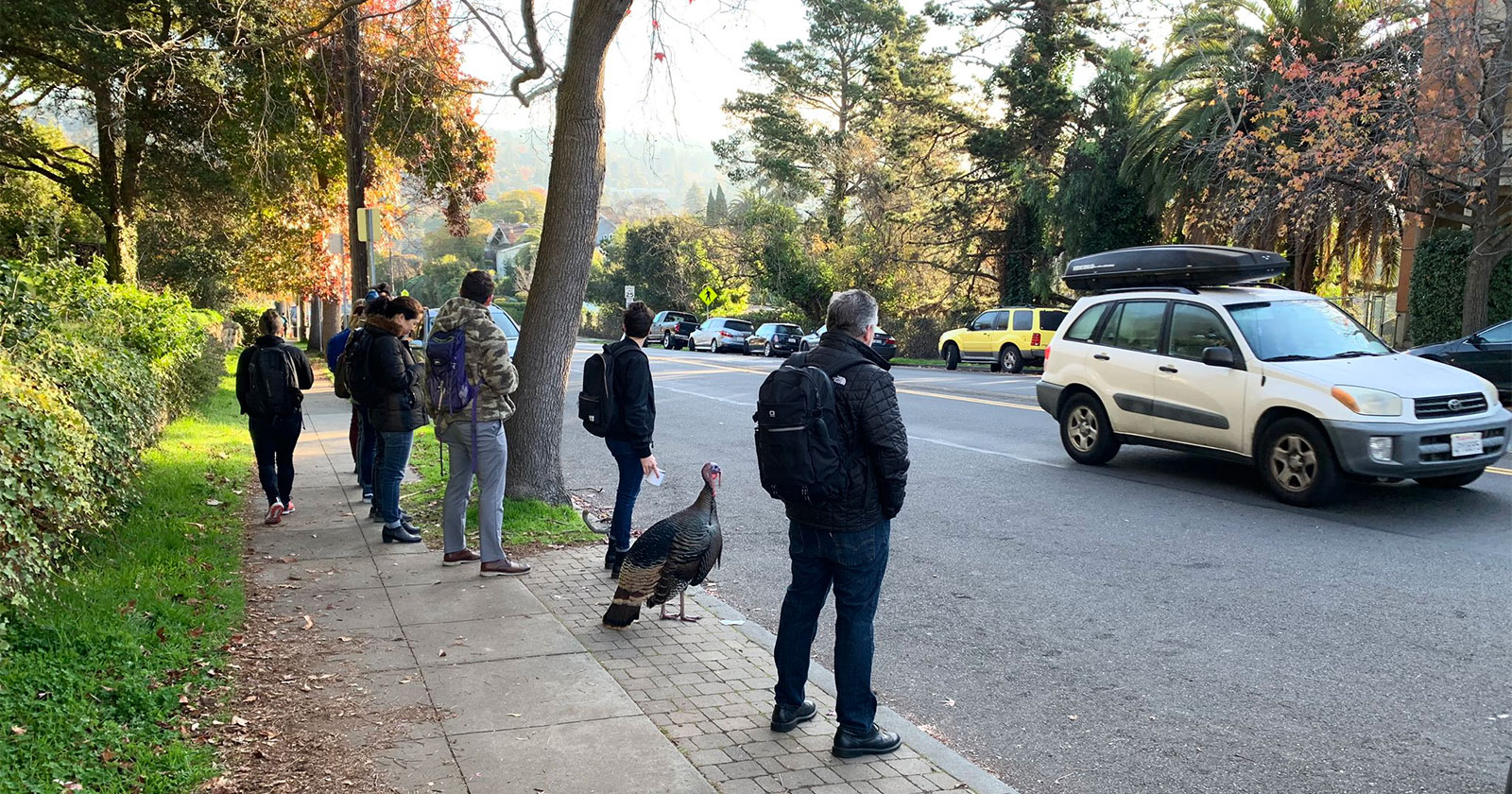 Gerald standing on sidewalk with people watching traffic. Photo: Mike Taylor