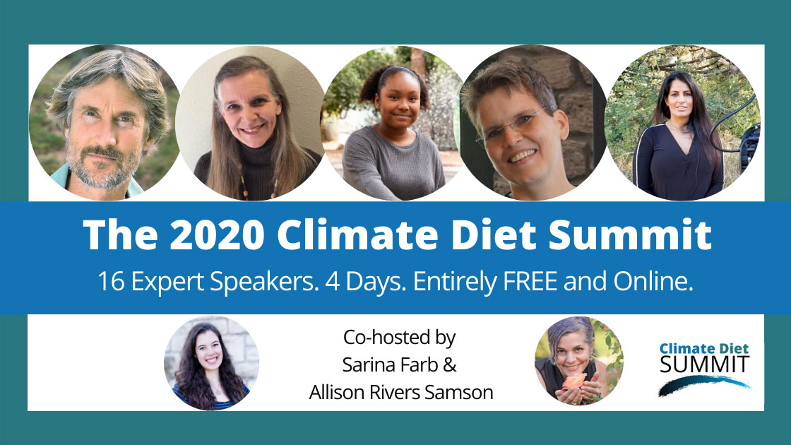Logo for the 2020 Climate Diet Summit
