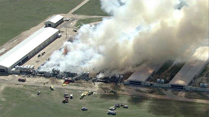 Egg farm burning
